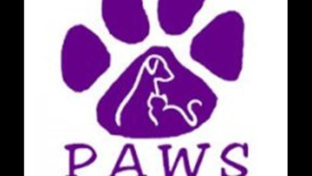 PAWS of NELA's Offsite Adoptions at Petco