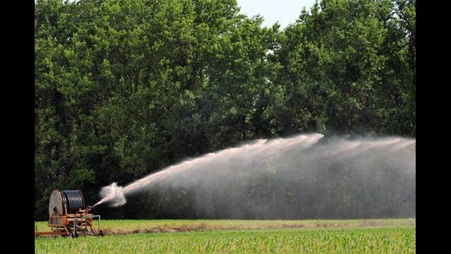 University of Florida web tool measures farms' water footprint