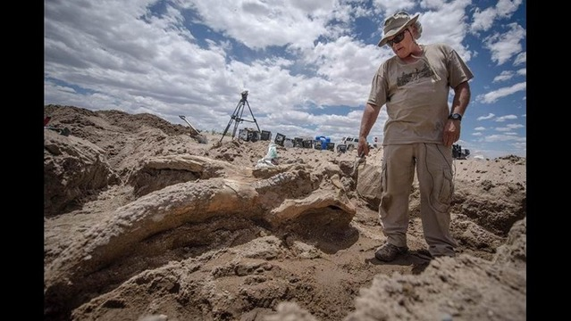 10 Million-Year-Old Mastodon Skull Found in New Mexico by Bachelor Party