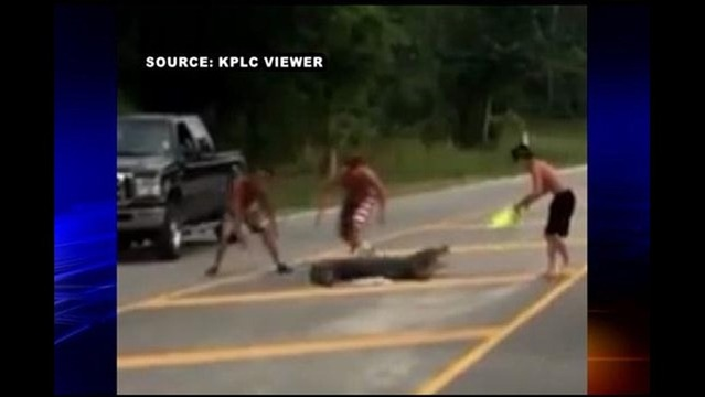 Web Extra: Encounter With Alligator Leaves Sulphur Man with 80 Stitches