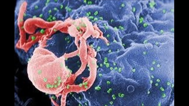 Virus Detected in Baby 'Cured' of HIV