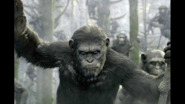 'Dawn of the Planet of the Apes' Scores at Box Office with $73M Debut