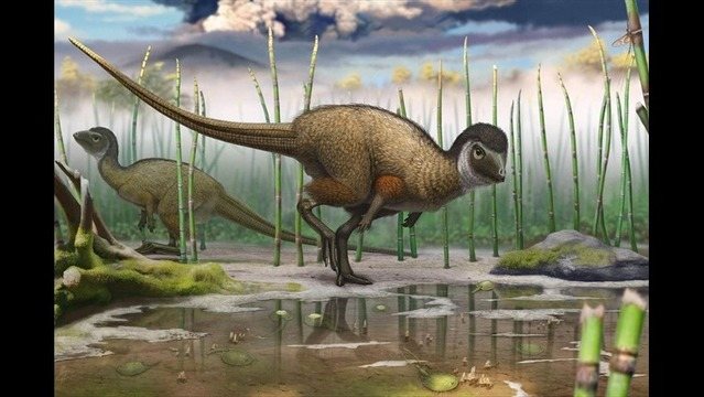 Siberian Fossils Suggest Dinosaurs Had Feathers Galore