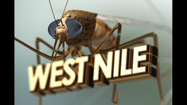 Two New West Nile Virus Cases Confirmed in Mississippi
