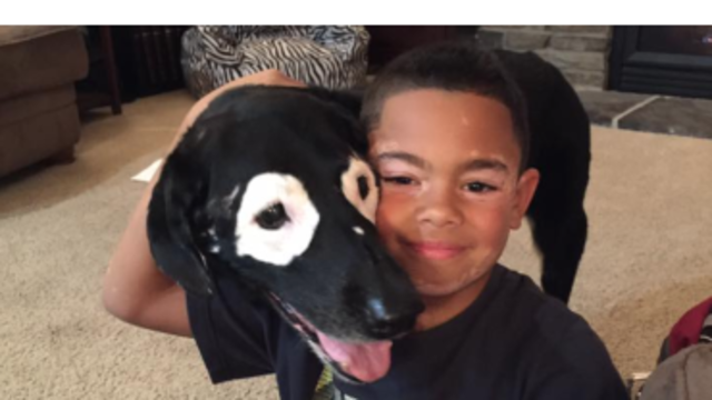 Arkansas boy with skin disorder finds best friend in dog with same condition