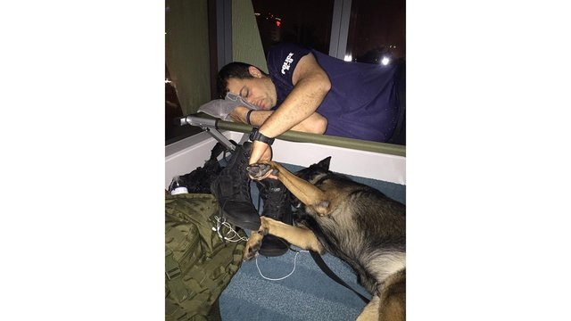 Florida police department shares touching photo of officer napping with dog