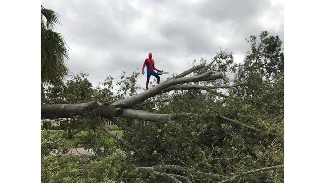 Real-life Spider-Man shows up to help in Florida after Hurricane Irma