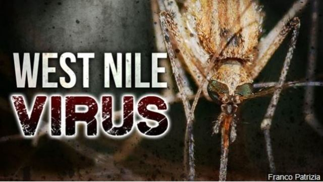 Human case of West Nile Virus found in Iberia Parish