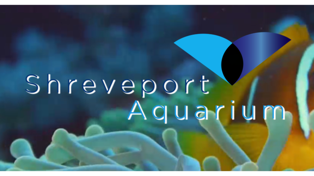 Shreveport aquarium now open for business