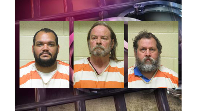3 North Louisiana men arrested on over 100 counts of child porn