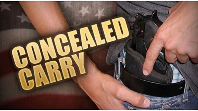 House approves bill allowing hide and carry across state lines