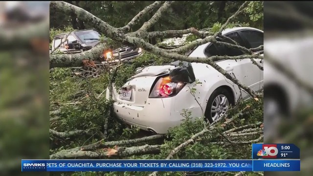 West Monroe Woman Trapped, Rescued After Tree Falls On Car Along Highway  552. Woman_trapped_in_car_when_tree_falls_in__0_20180821233346