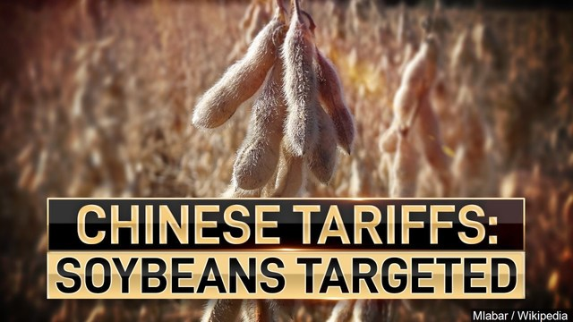 Abraham bill provides relief to Louisiana soybean farmers impacted by Chinese tariffs
